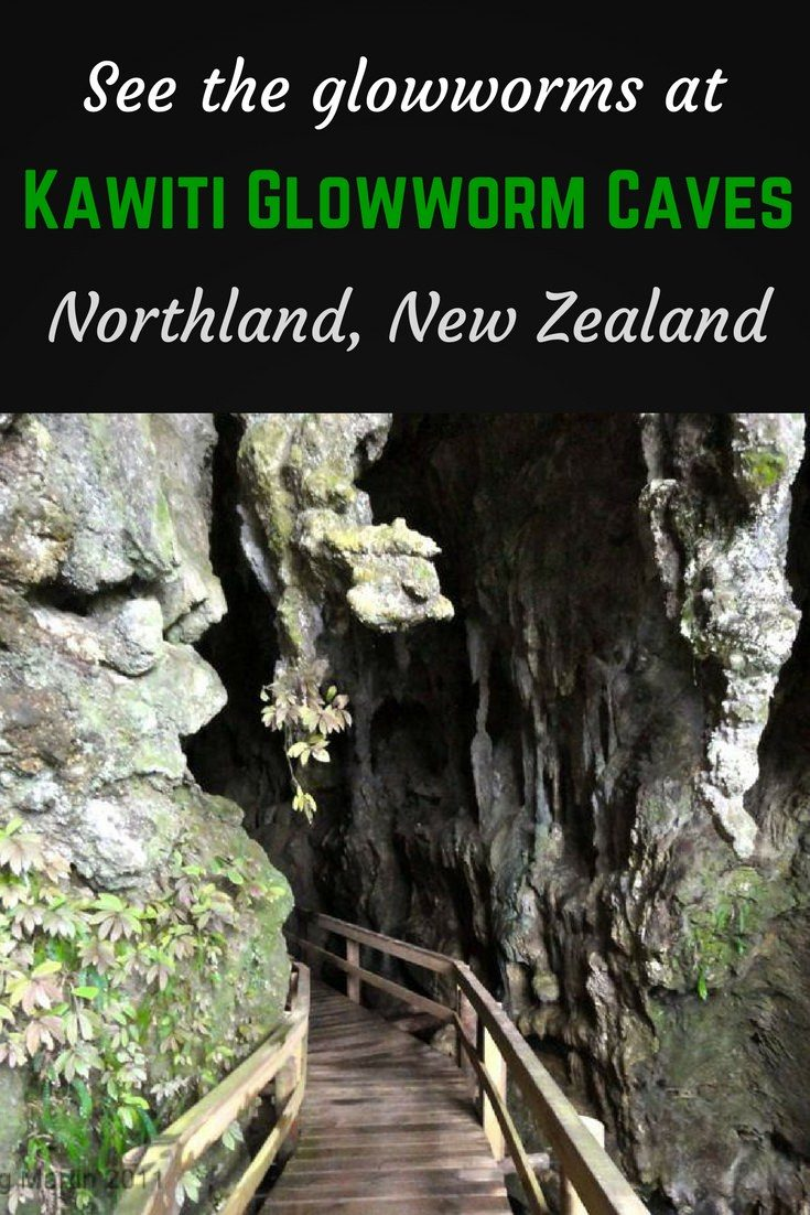 Kawiti glowworm caves Pinterest pin