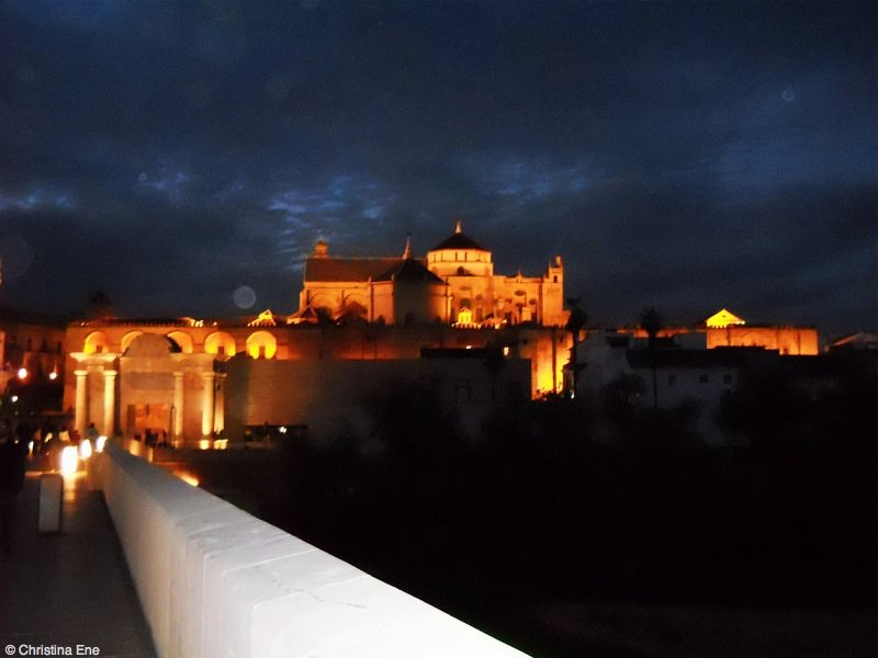 The Mezquita by night is pretty impressive.