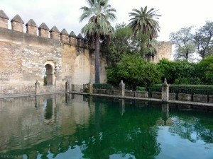 A pond and interior wall of the Alcazar.