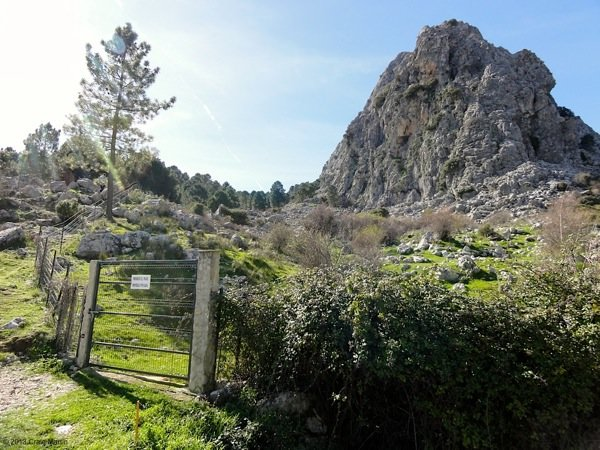 Things to do andalusia grazalema hiking