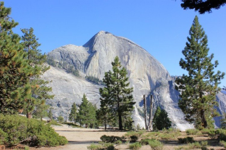 Visit Yosemite National Park
