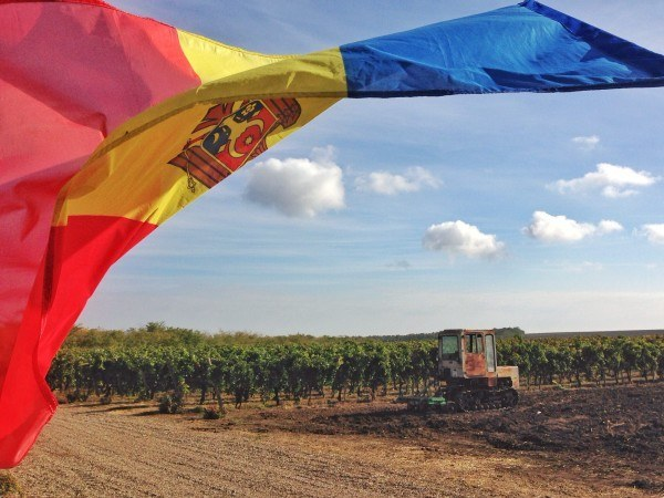 The Moldovan flag flies over the Et Cetera vineyard.