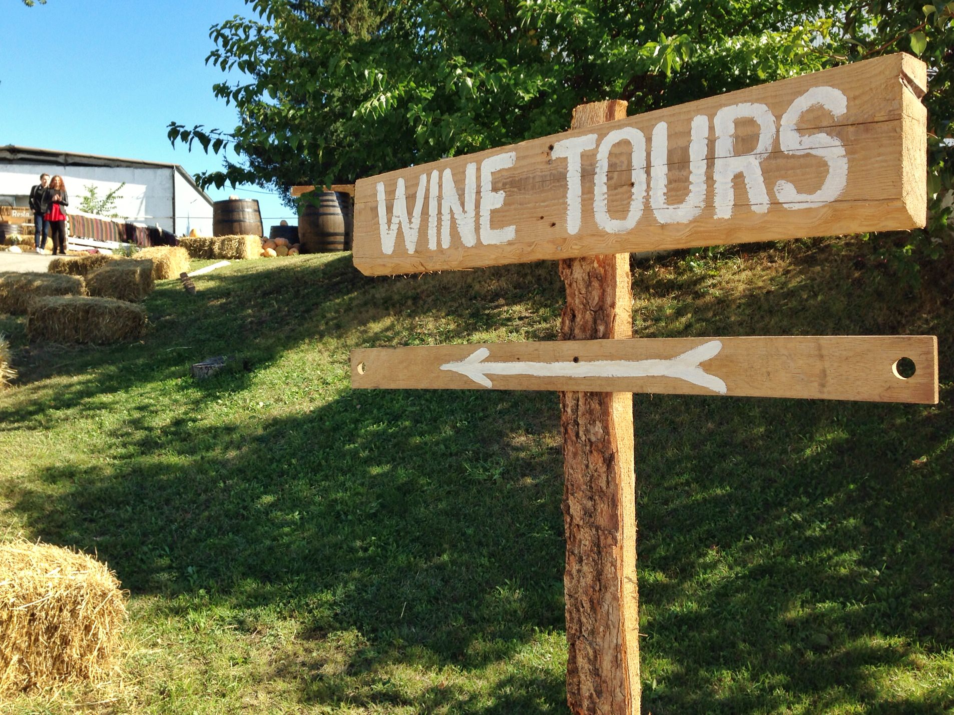 You will see English on some signs, like this one at Asconi Winery.