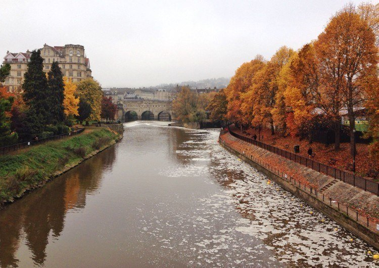 Bath trees and river
