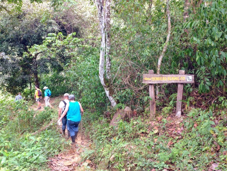 Group hiking in Panama
