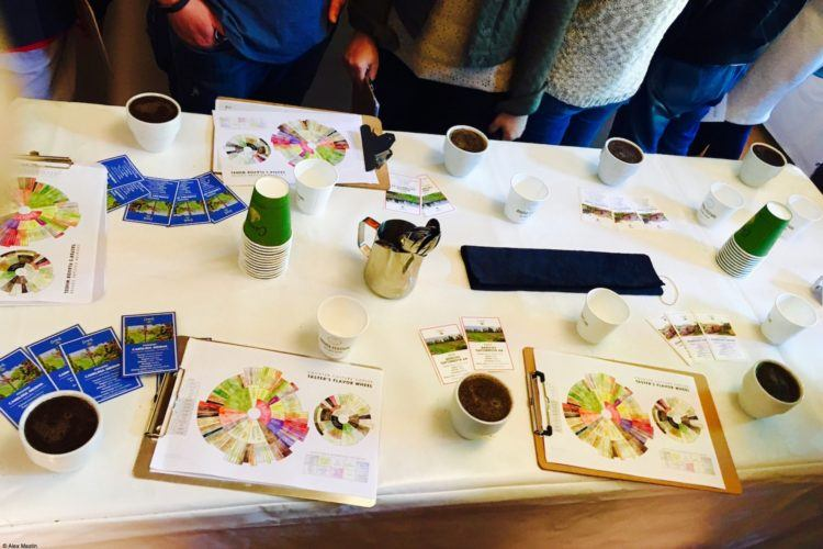 A coffee cupping class is a great way to start your Aroma experience.
