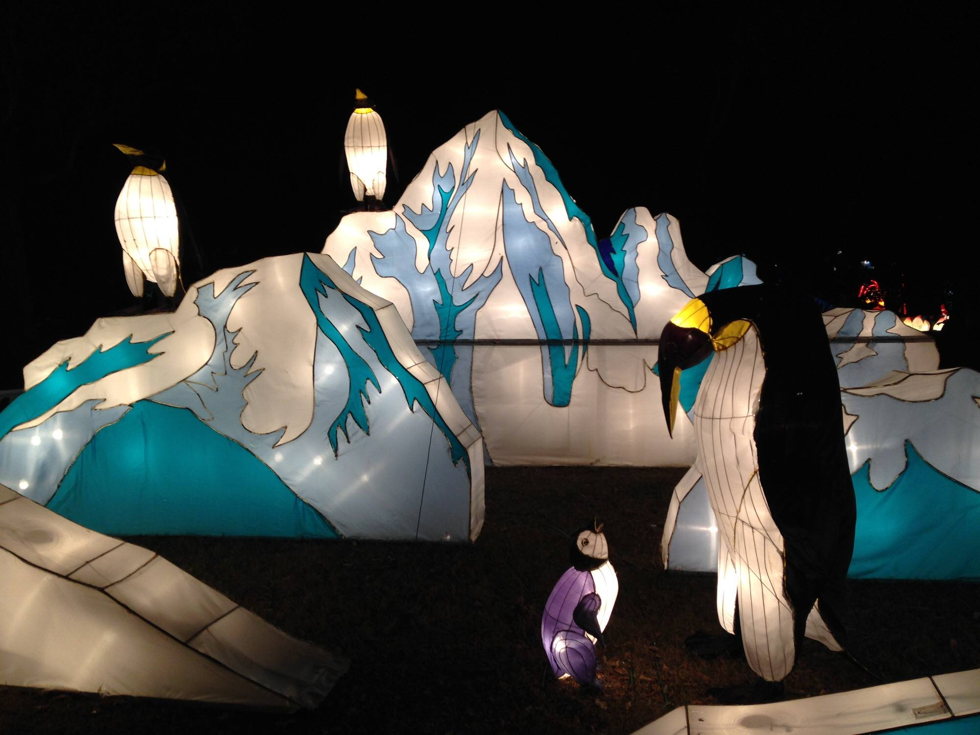 Auckland Lantern festival at Chinese New Year