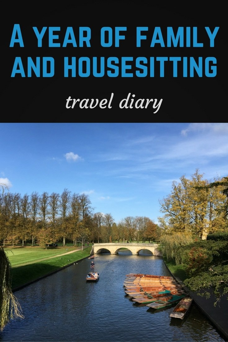 Travel diary pinterest pin