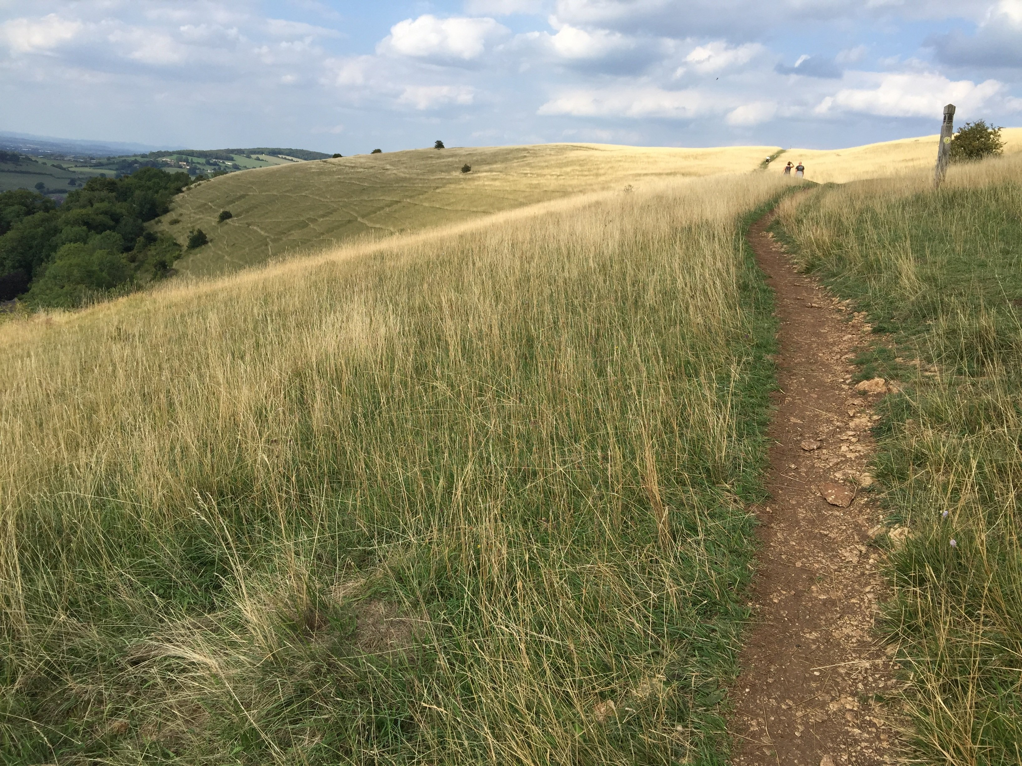 Rolling hills on the Cotswold Way.