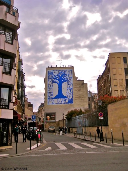 L'arbre bleu from the street