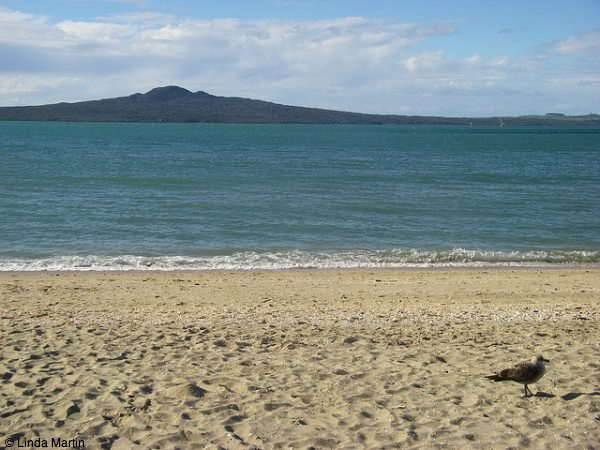 Rangitoto, Auckland New Zealand