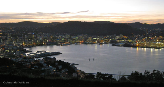 Wellington From Mt Vic at Dusk - new zealand