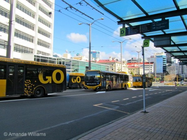 wellington buses new zealand
