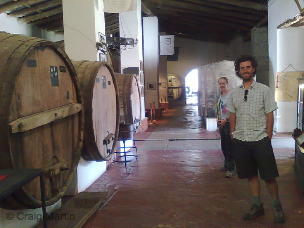 wine argentinan winery